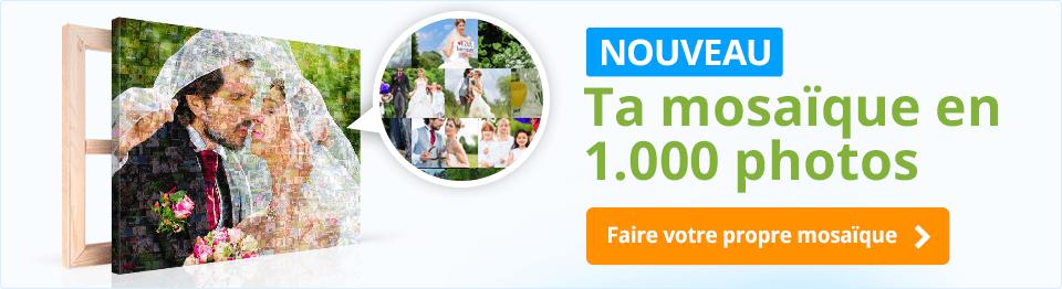 banner quer FCE FME fr